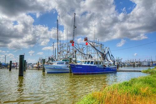 Louisiana Equipment Appraisal